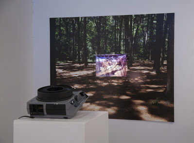 Magali Duzant, 'Clearing In The Woods, 1969/2012', 2012