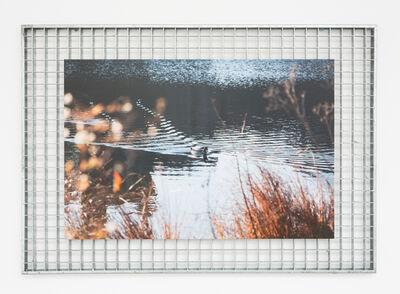 Dena Yago, 'Do you ever feel like a plastic bag?', 2014