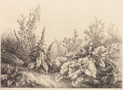 Eugène Bléry, 'Study of a Burdock', 1840