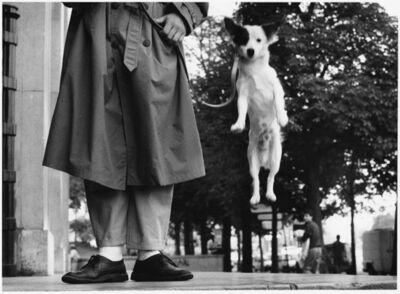 Elliott Erwitt, 'France. Paris. 1989. (Dog jumping)', 1989