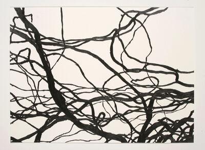Meghan Gerety, 'Study 05', 2006