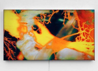 Pipilotti Rist, 'Untitled 3', 2009