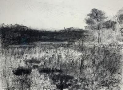 Rob Dutoit, 'Beech Forest Pond', 2021