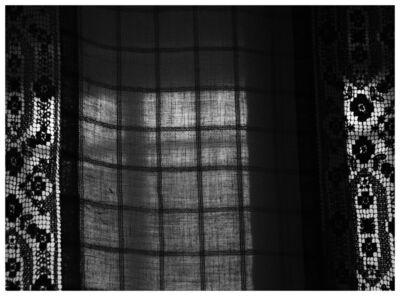 Mircea Stanescu, 'MORNING TRAP 1', 2015