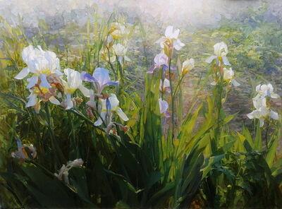 Gelena Pavlenko, 'Rays, Irises', 2017