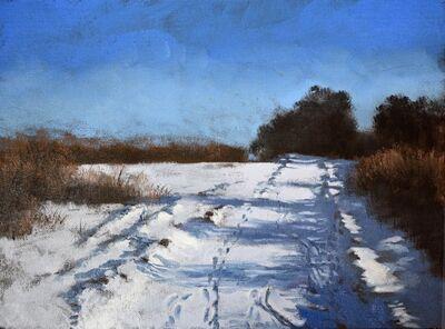 Eileen Murphy, 'Snow Tracks ', 2018