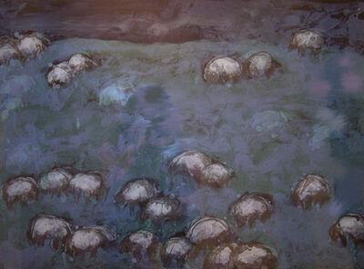 Theodore Waddell, 'Beaverhead Sheep'