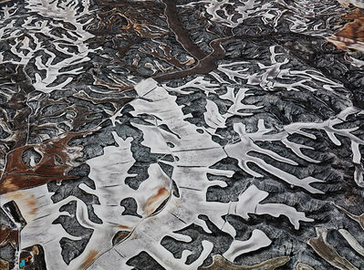 Edward Burtynsky, 'Dryland Farming #7, Monegros County, Aragón, Spain', 2010