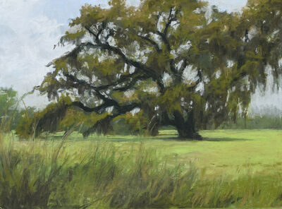 Mary Monk, 'Old Oak', 2020