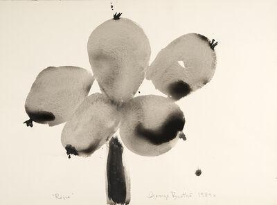 George Bartko, 'Ripe', 1989