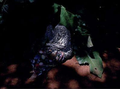 Viviane Sassen, 'Biotape', 2005