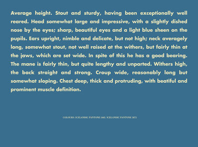 Birgir Andrésson, 'Horse Portrait (Average height, stout and strudy...)', 2005