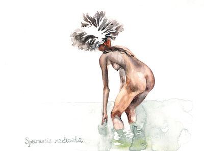Nikita Shalenny, 'Sparassis Radicata', 2015