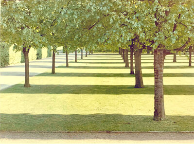David Hockney, 'Herrenhausen, Hannover, Germany', 1970