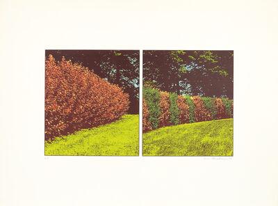 Ivor Abrahams, 'The Garden Suite II (Diptych)', 1970