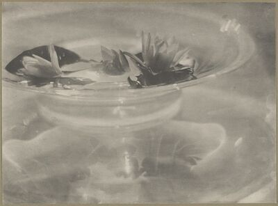 Baron Adolph De Meyer, 'Glass Bowl with Water Lilies,', 1908
