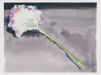 Wayne Thiebaud, 'Carnation', 1991