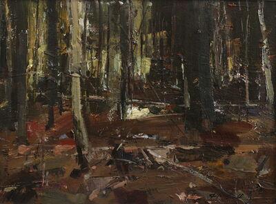 Stephen Scott, 'Forest Light', 2018