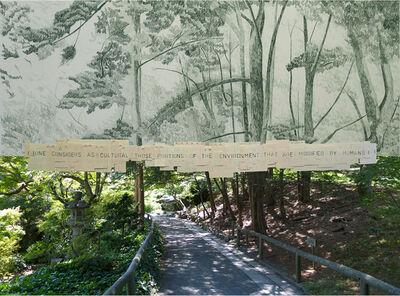 Gabriela Albergaria, '132 (Brooklyn Botanical Garden)', 2016