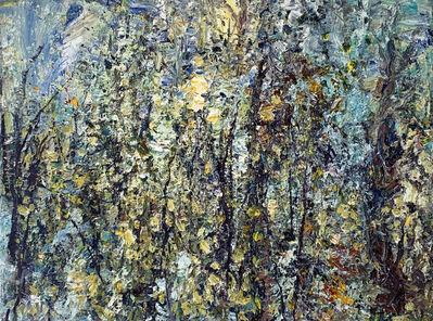 Jim Reid, 'Forest Study 14-5-13', 2013