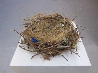 Elmas Deniz, 'Bird 'head'', 2012