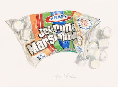 Don Nice, 'Marshmallow', 2014