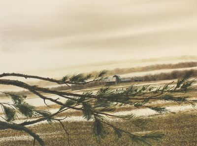 David McKay, 'Pine Bough and Fog', 2016