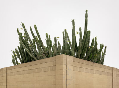 Brad Moore, 'Newland, Westminster, Calirfornia', 2008