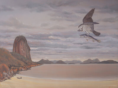 Alberto Baraya, 'Osprey in Praia Vermelha, Pan de Azucar, Rio de Janeiro', 2018