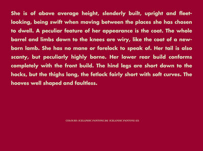 Birgir Andrésson, 'Horse Portrait (She is of above average...)', 2005