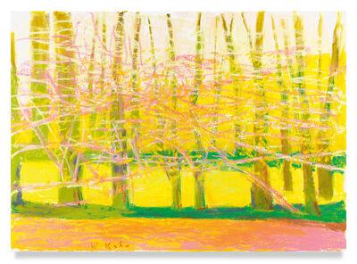 Wolf Kahn, 'Bright Spring', 2019