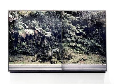 Carlos Irijalba, 'Walls', 2017