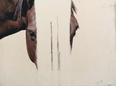 Andre Petterson, 'Soft Veil'