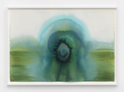 Thiago Rocha  Pitta, 'the lake at the eye of narcissus', 2018
