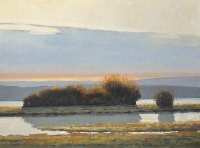 John McCormick, 'Wetlands, Late Day', 2017