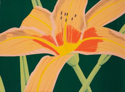 Alex Katz, 'Day Lily 1', 1969