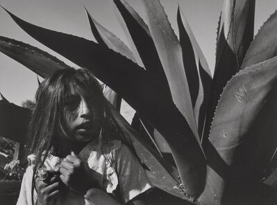 Mariana Yampolsky, 'Young Girl with Magay Plant', 1992