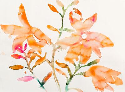 Kim McCarty, 'Orange Flowers', 2017