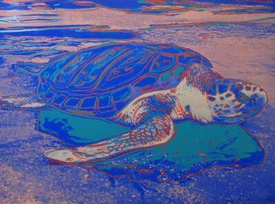 Andy Warhol, 'Turtle  F&S ll.360A', 1985
