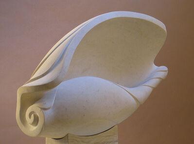 Anne Curry MRBS, 'Shell', 2009