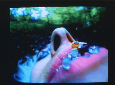 Pipilotti Rist, 'Blauer Leibesbrief (Blue Bodily Letter)', 1992/98