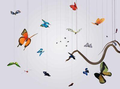 Hong Lei, 'Speak, Memory of Butterflies 說吧, 記憶蝴蝶', 2005