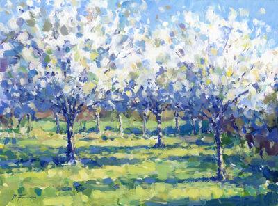 David Farren, 'Orchard Blossom ', 2021