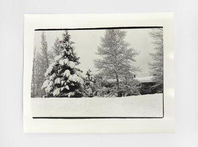 Andy Warhol, 'Aspen Landscape', 1980