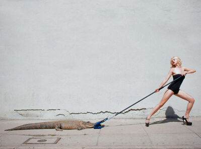 Tyler Shields, 'Birkin Tug Of War', 2014