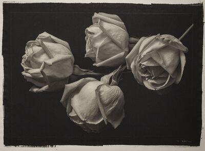 Kenro Izu, 'Still Life #400', 1993