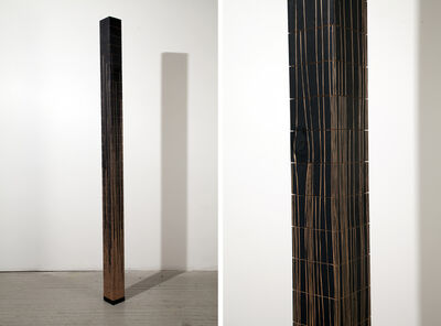 Fırat Erdim, 'Posts and Aggregate Topographies (15)', 2009-2012