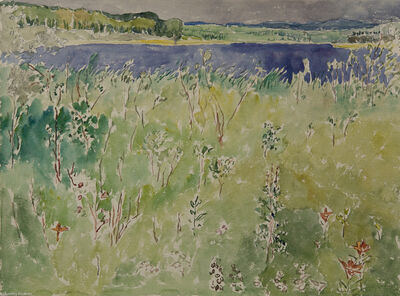 Dorothy Knowles, 'Spruce River Reservoir with Lilies', 1986
