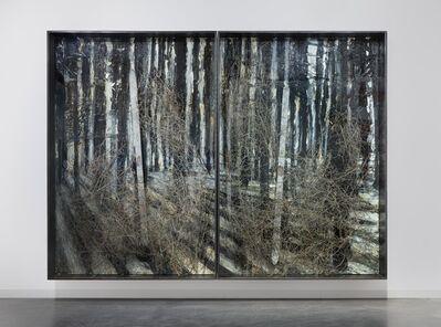 Anselm Kiefer, 'Steigend steigend sinke nieder ', 2009-2010