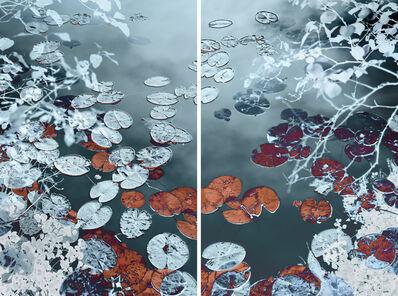 Santeri Tuori, 'Water Lilies #4', 2018